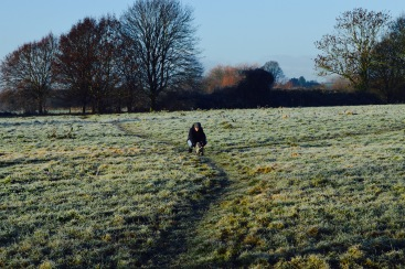 It was a beautiful, sunny and crisp frosty morning for a walk.